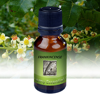 Alchemy Essential Oils Frankincense