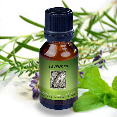 Alchemy Essential Oils Lavender